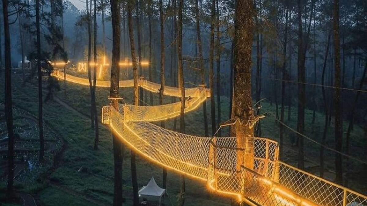 Волшебный мост огней, который висит среди деревьев в лесу Индонезии – сказочные фото