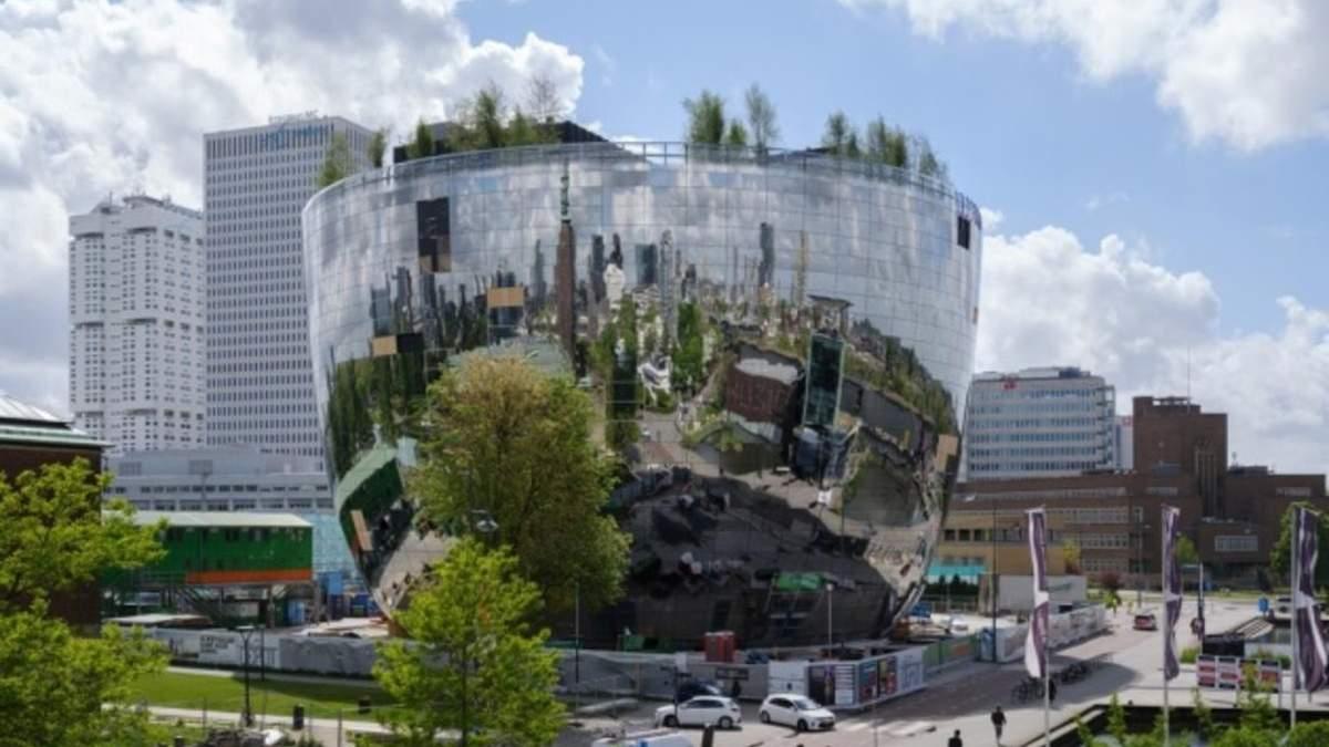 В Роттердаме запустили туристический AR-маршрут деревьями