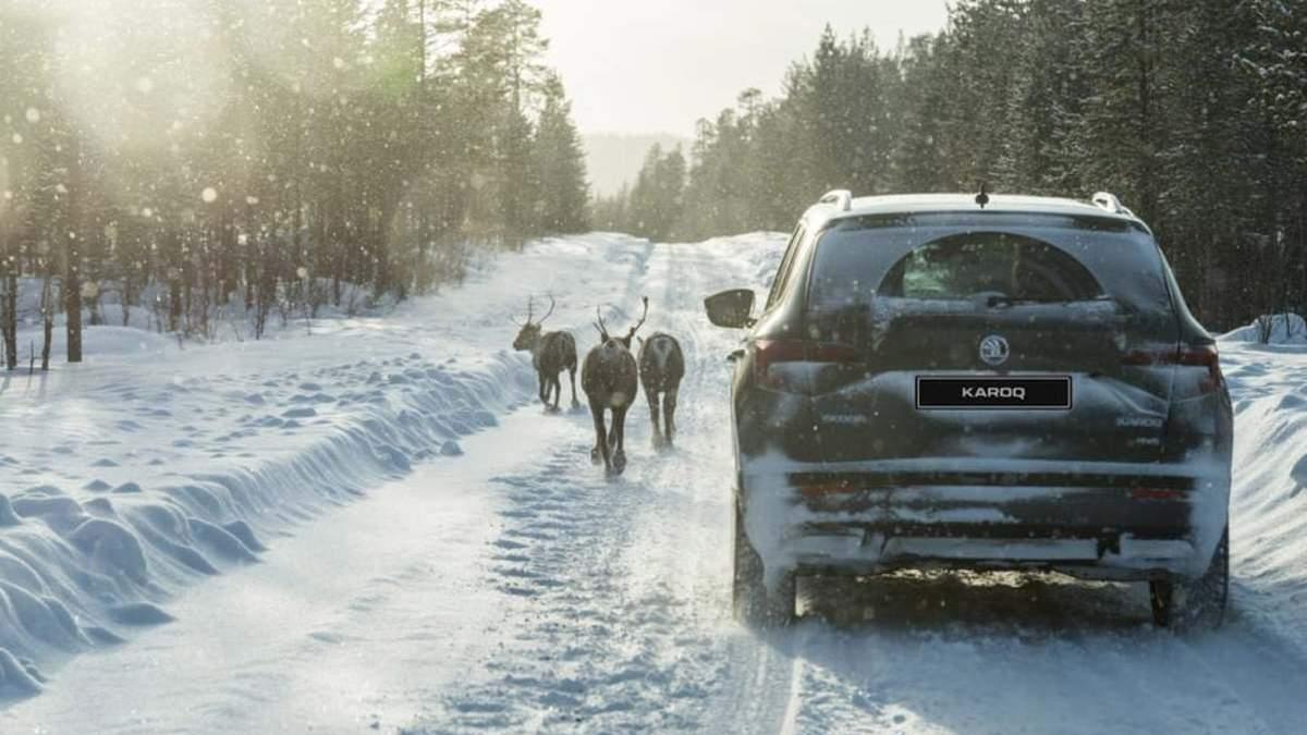 Куди поїхати на Різдво в Україні