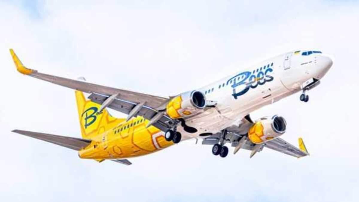Bees Airline запускає чартерні рейси з Києва до Фінляндії
