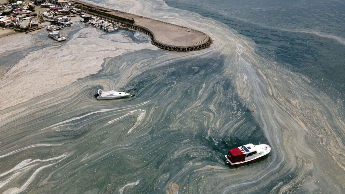 Мармурове море в Туреччині вкрилося коричневою піною