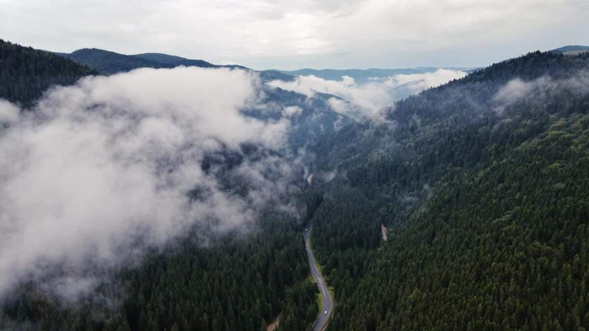 В сети показали, как Черногору омывают волны облаков: видео