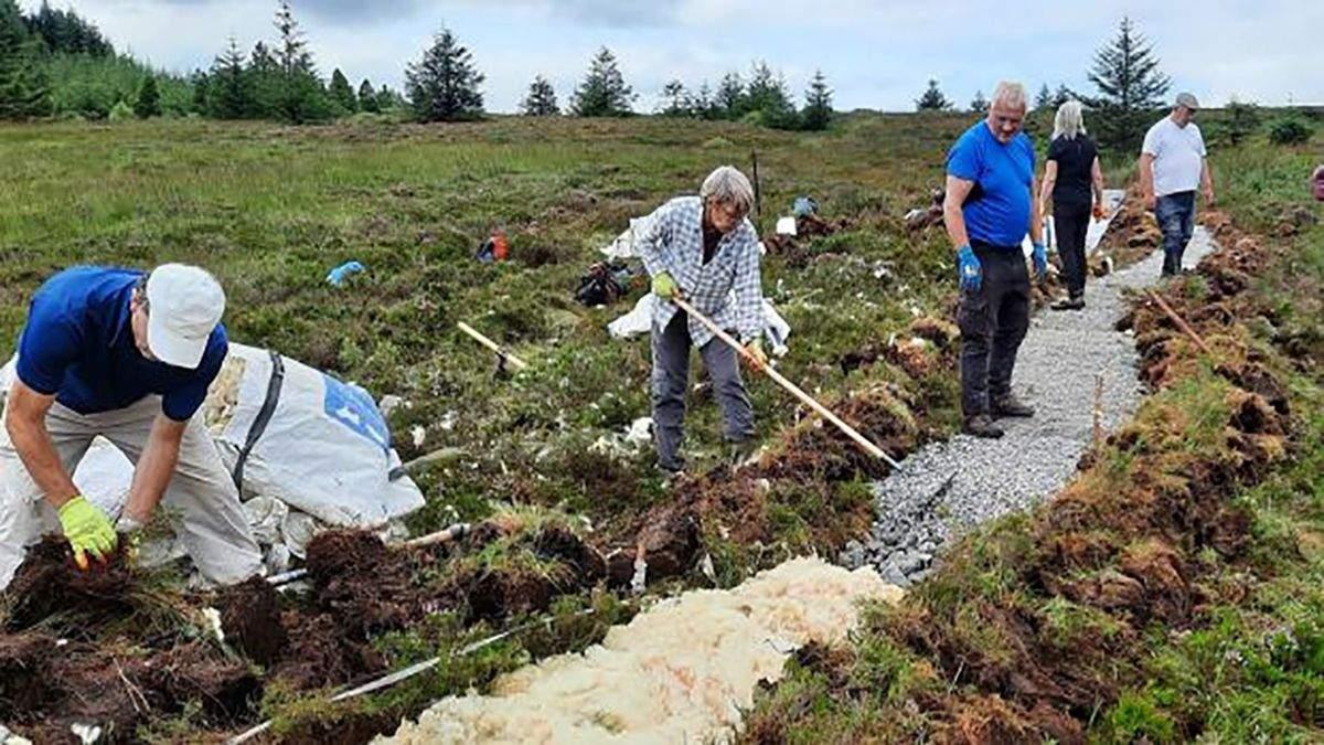 В Ирландии делают горные тропинки из овечьей шерсти