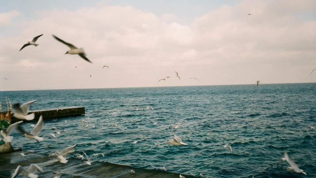 Вперше за весь час: Одеса не увійшла до 10 найпопулярніших морських курортів України – рейтинг - Новини Одеси - Travel