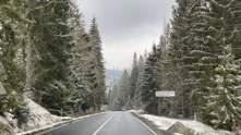 На Закарпатье открыли одну из самых высокогорных дорог Украины, которая ведет к озеру Синевир
