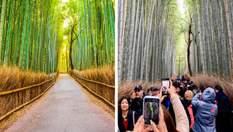Ожидания и реальность: курьезные фото из поездок, когда вместо восторга получил разочарование