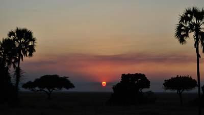 Танзанія змінила правила в'їзду: нові вимоги