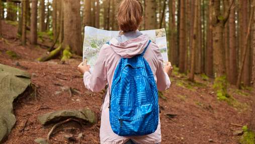 Як вижити в лісі без їжі, води та спорядження