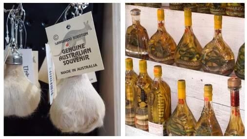 Алкоголь со змеями и не только: самые жуткие сувениры, которые привозят туристы – фото 18+