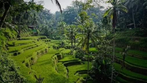 Балі відкриває свої кордони для іноземних туристів